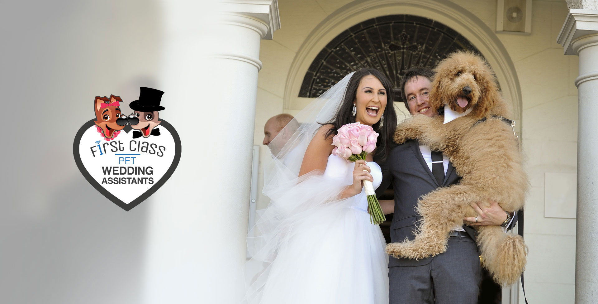 Pets At Weddings First Cl Pet